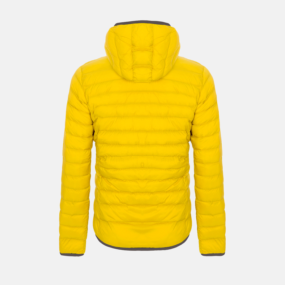 MAN'S NASSER PADDED JACKET YELLOW